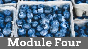 Module Four 1 - Natural Female Hormone Balance
