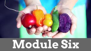 Module Six 1 - Natural Female Hormone Balance
