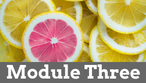 Module Three 1 - Natural Female Hormone Balance